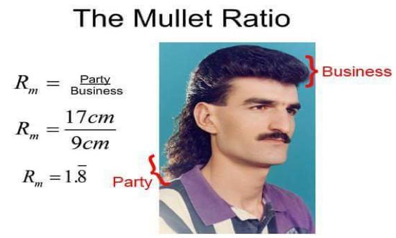 mulletpic